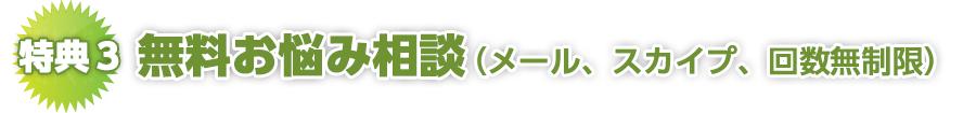 無料お悩み相談(メール、スカイプ、回数無制限)
